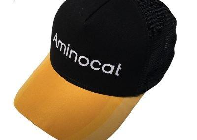 AMINOCAT-01